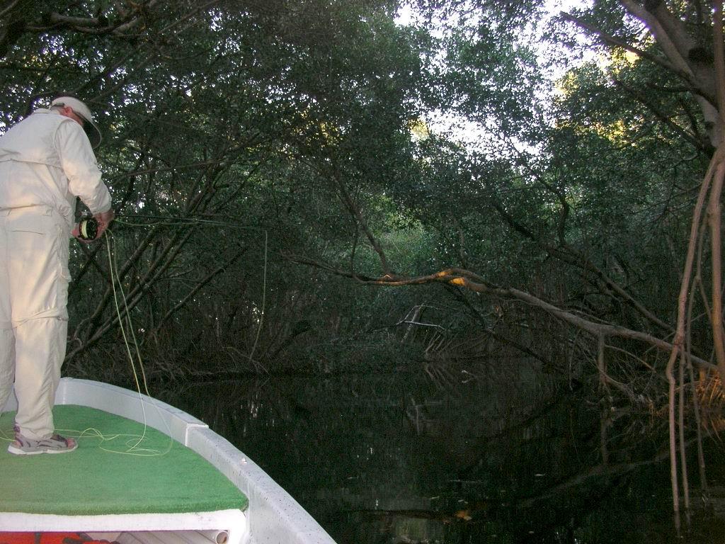flyfishing creek