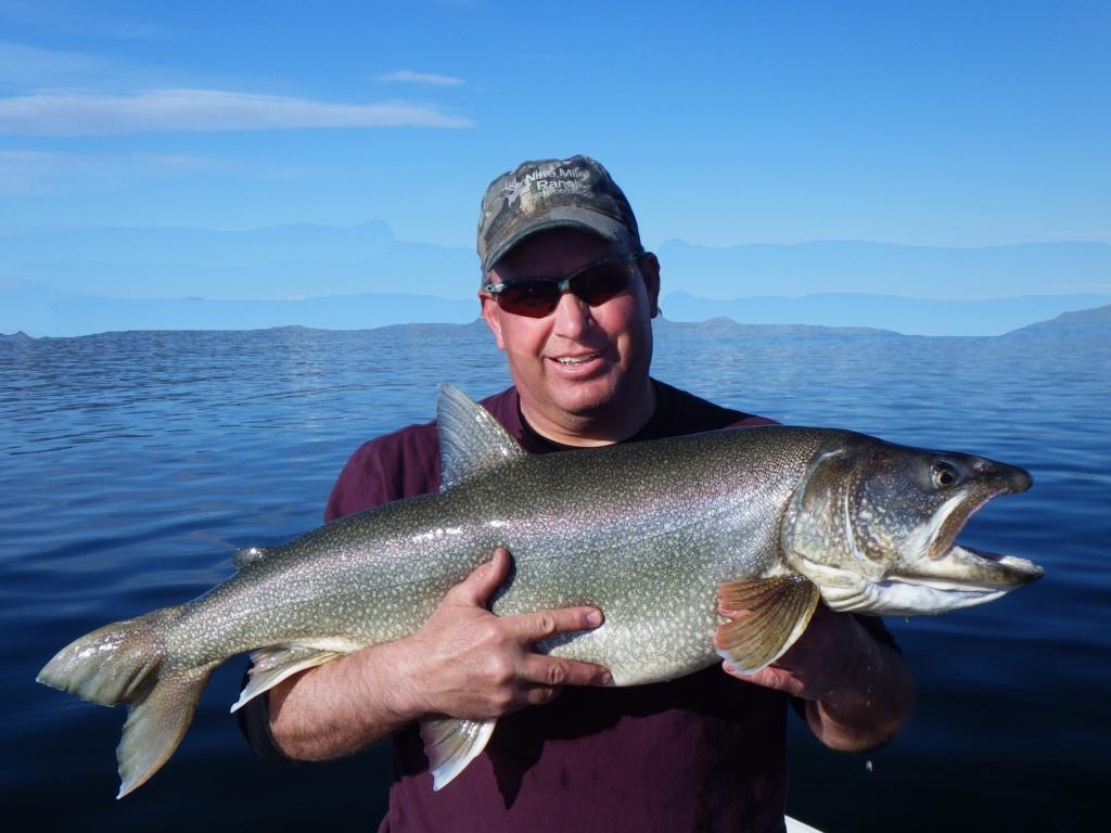 Spring Lake Trout