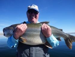 40 pound Mackinaw